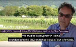 Biodiversity of vineyards: Mauro Jermini