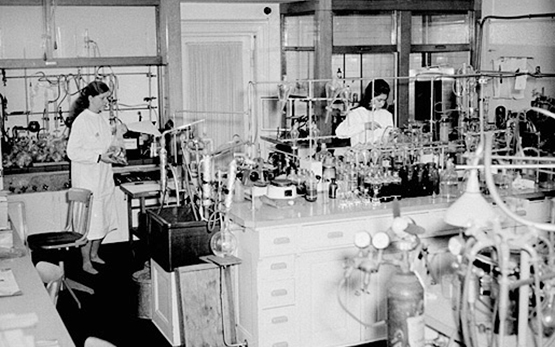Wädenswil Laboratory 1 1964