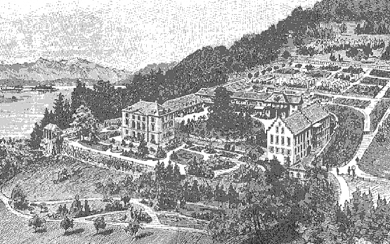 Wädenswil Castle Copperplate Engraving