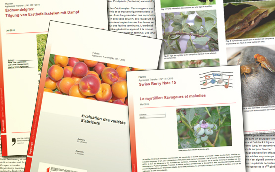 Publication Series Agroscope Transfer