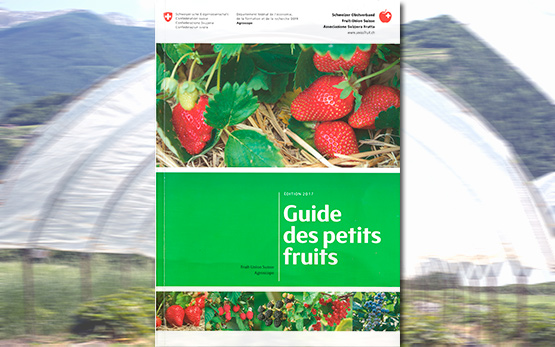 couverture-guide-petits-fruits-w