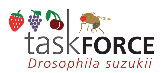 Logo_TaskForce_Ds